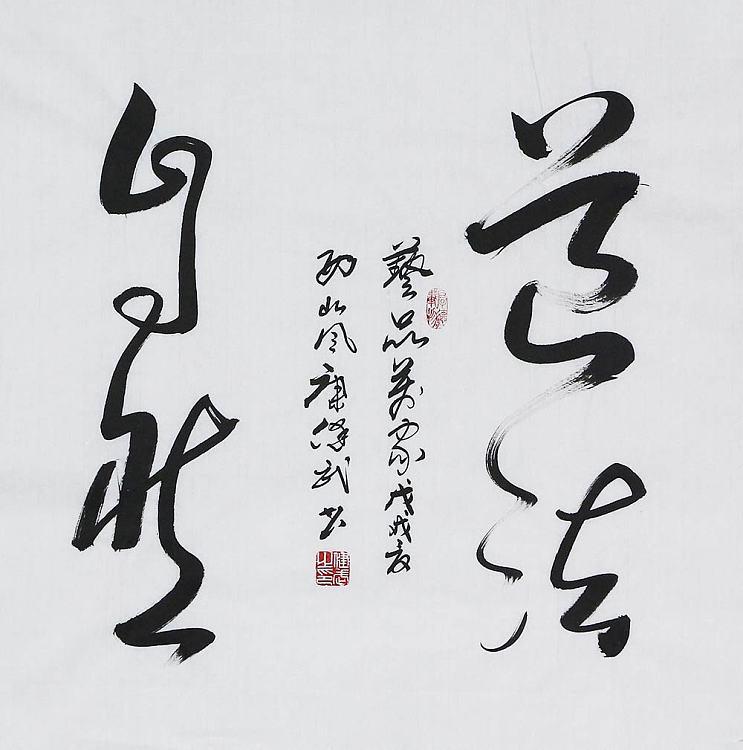 陕西省书法家协会会员  康健武  书法
